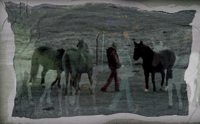 Horserider_2